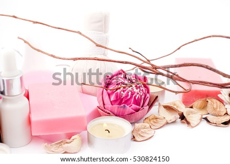 Spa with Lotus in Pink Concept