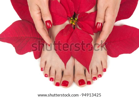 Spa with manicured hands and pedicured feet - stock photo