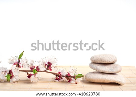 Spa with stone, rock for zen, beauty, balance, wellness, flower brunch on white background. Concept of health, therapy, relaxation. Massage treatment for tranquil and harmony - stock photo
