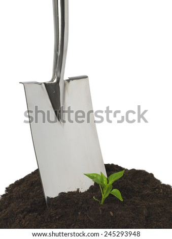 Spade digging with new growth - stock photo