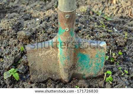 Spade in a bed - stock photo