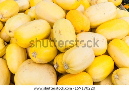Spaghetti squash or vegetable spaghetti on display at the farmers market - stock photo