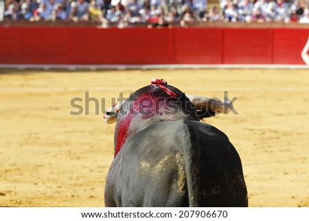 Spanish bullfight - stock photo