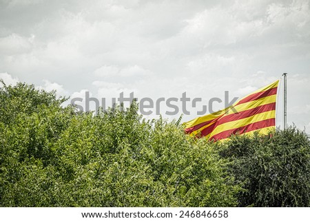 spanish flag behind some trees in summer - stock photo