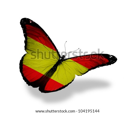 Spanish flag butterfly flying, isolated on white background - stock photo