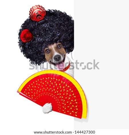 spanish flamenco dog with very big curly hair and hand fan behind banner placard - stock photo