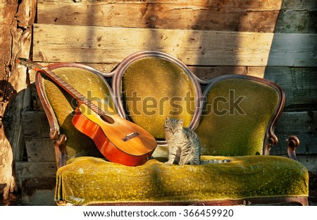 Spanish guitar and tabby cat on an old sofa - stock photo