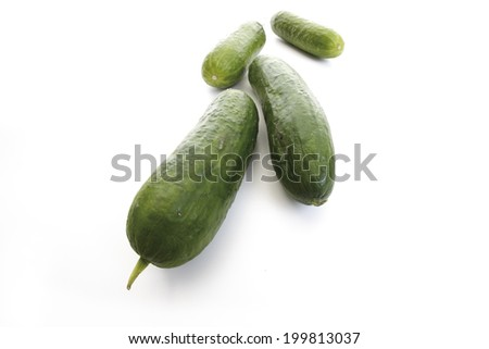 Spanish mini cucumber, elevated view