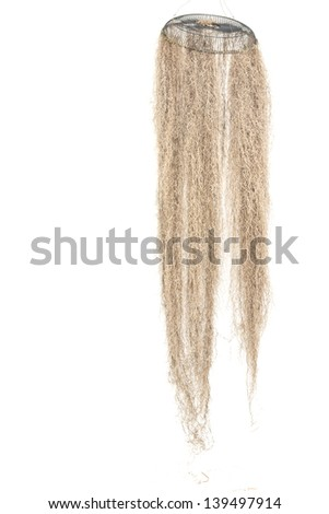 Spanish moss hanging isolated on white background for decoration - stock photo