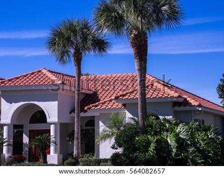Spanish Tile Roof And Palm Trees