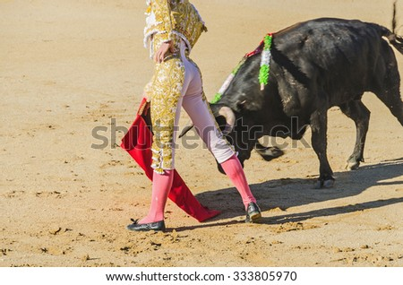 Spanish torero with a bull in a bullfight