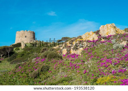 Spanish tower in Santa Teresa di Gallura, Sardinia, Italy