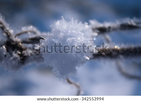 Sparkling snow on frosted dry grass. - stock photo