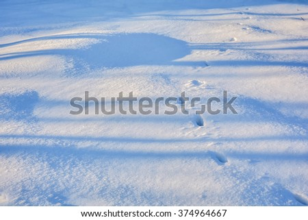 sparkling surface of fresh snow