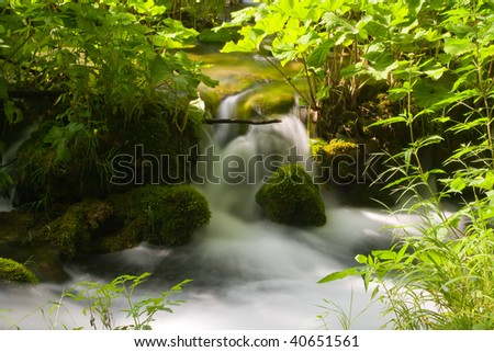 Sparkling water stream between the green vegetation - stock photo