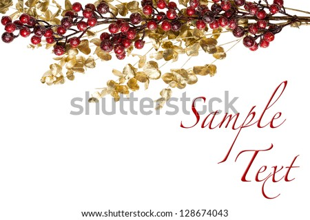 Sparkly Red Berries on Golden Leaves Isolated Border with Copy Space