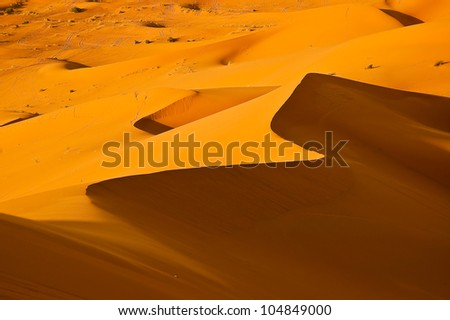 Spectacular details of shapes and curves of sand dunes in Sahara - stock photo