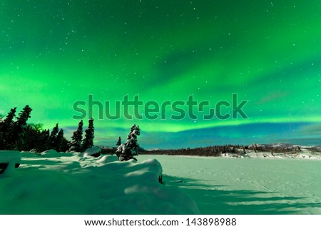 Spectacular display of intense Northern Lights or Aurora borealis or polar lights forming green swirls over snowy winter landscape of frozen Lake Laberge  Yukon Territory  Canada - stock photo