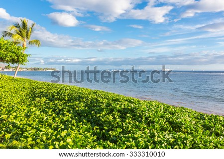 Spectacular ocean view with palms and beach, Maui, Hawaii, USA - stock photo