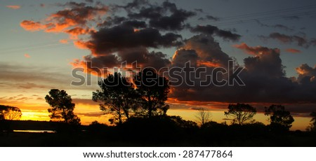 Spectacular sunset view with isolated trees standing out in sharp contrast to the cloudy sky on the road to Johannesburg. - stock photo