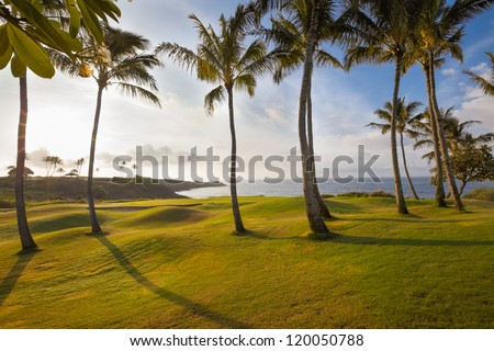 Spectacular, tropical island golf course hole in dramatic early morning light. The green is ringed by palm trees and a sand trap. - stock photo