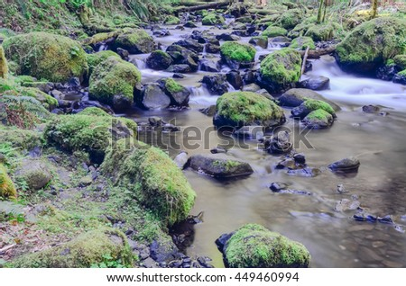 Spectacular view of Gorton Creek Falls in the Columbia River Gorge, Oregon, US. A stunning two-tiered 149ft waterfall and several smaller falls with moss covered, lush rainforest surrounding the creek - stock photo