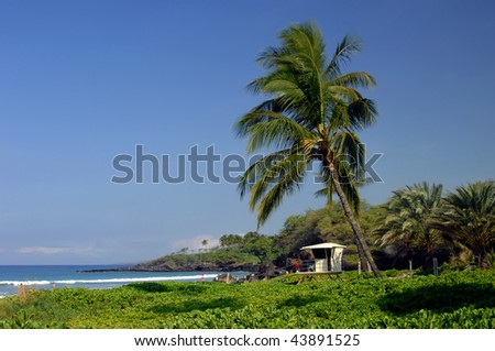 Spencer Beach Park on the Big Island of Hawaii is watched over by life guard stations.  Leaning Palm trees sway in the tropical breezes. - stock photo