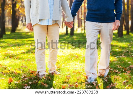 Spending great time in park. Close-up of senior couple holding hands while walking by park together  - stock photo