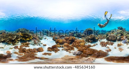 Spherical, 360 degrees, seamless panorama of the lady freediver exploring the tropical sea  with coral reef