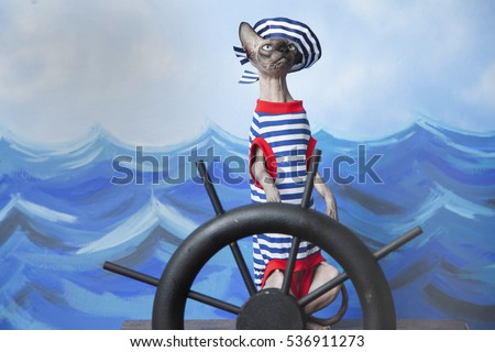 Sphinx Cat in sailor costume with stripped shirt and sailor cap at help of a ship