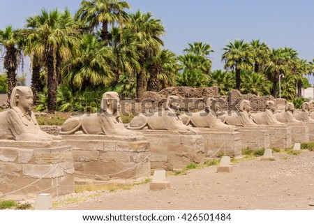 sphinxes forming part of Luxor temple in Egypt - stock photo