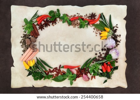 Spice and herb abstract border over parchment and lokta paper background. - stock photo