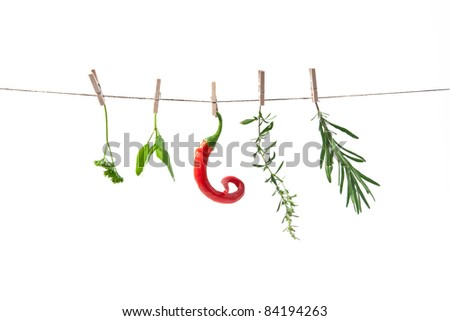 spice- basil, thyme, resemary, parsley with hot pepper - stock photo