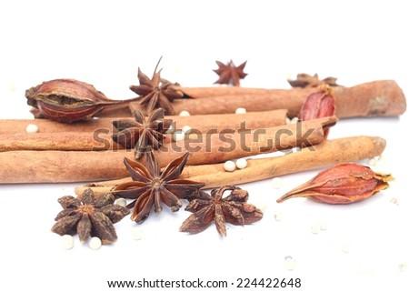 spice-cinnamon - stock photo