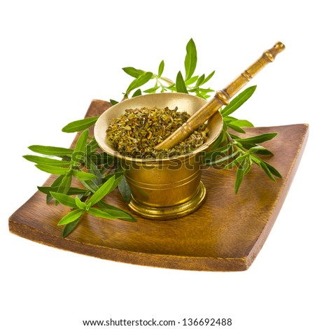 Spice Kitchen - oregano, dry in a copper mortar and fresh sprigs of oregano isolated on white background - stock photo