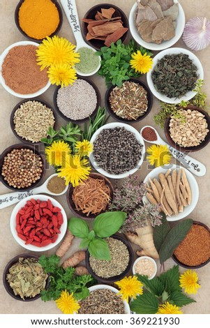Spices and herb selection used in natural alternative herbal medicine and for culinary purposes on hemp paper background.  - stock photo