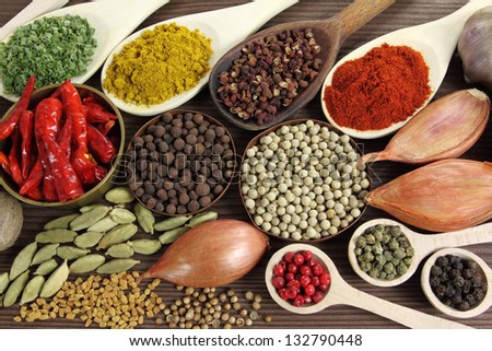 Spices and herbs in metal  bowls and wooden spoons. Food and cuisine ingredients. - stock photo