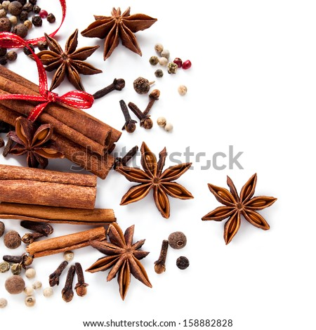 Spices on the white background - stock photo