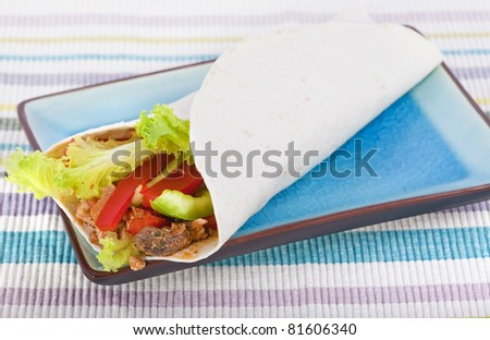 Spicy chicken with salad wrapped in a soft flour tortilla, composed with plate and background cloth. - stock photo