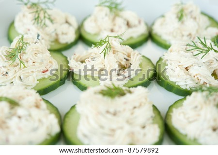 Spicy feta cheese on cucumber circles on a white plate with  fennel