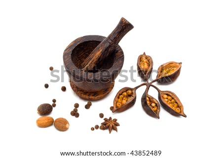 Spicy (pepper, nutmeg, cloves) with mortar on white background