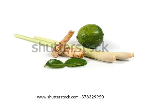 Spicy Thai food ingredients  lime, galangal, ginger, kaffir ,lemongrass isolated on white background  - stock photo