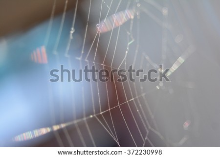 spider web close up, shallow depth of field - stock photo