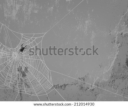 spider web silhouette on concrete wall - halloween theme spooky background with place for your text - stock photo