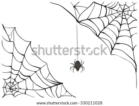Spiderweb. Black scary spider of web. Poison spider - stock photo