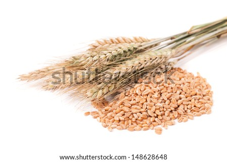 spikelets of wheat and corn - stock photo