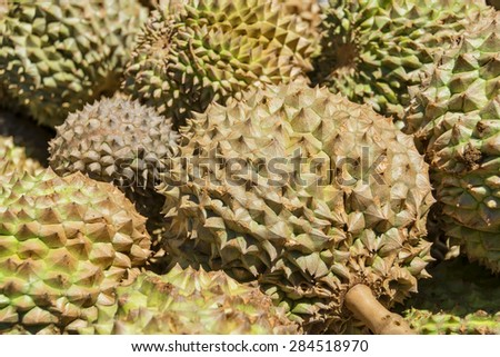Spiky and smelly Philippines Durian for sale in a local market