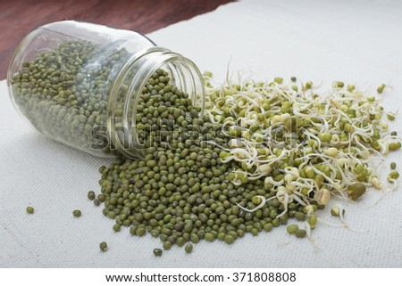 Spilled jar of fresh whole Vigna radiata mung beans and pile of young mung bean sprouts on white fabric - stock photo