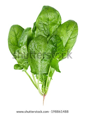 Spinach vegetable closeup isolated on white  - stock photo