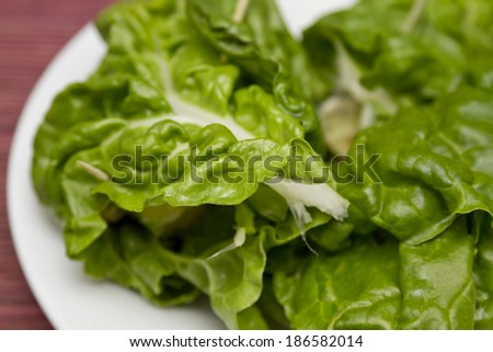 Spinach with tuna - stock photo